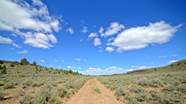 empty dirt road under blue sky and puffy clouds in the desert with sagebrush south steens mountain near malheur national wildlife refuge - oregon us state stock videos & royalty-free footage