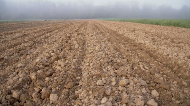 vídeos y material grabado en eventos de stock de ds vacío campo en la niebla - campo arado