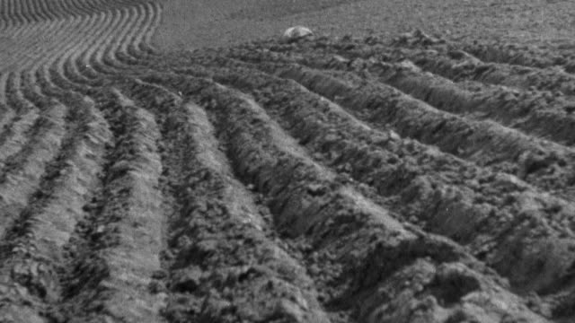 vidéos et rushes de montage empty fields ready to seed and rooftops of village / united kingdom - 1930