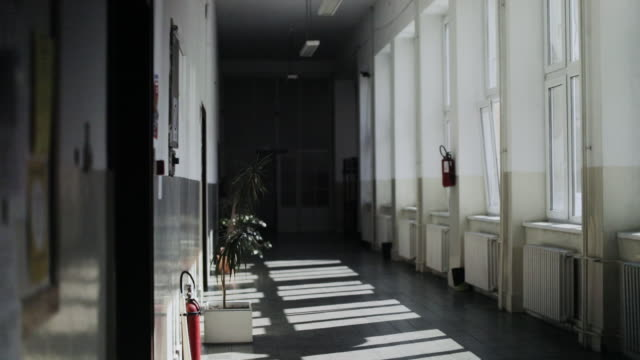 empty hall of a school with sunbeams. - corridor stock videos & royalty-free footage