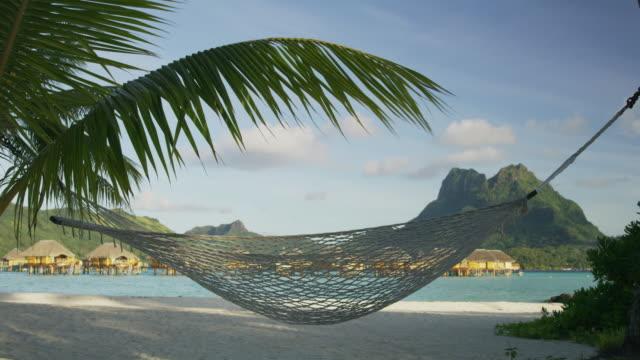 empty hammock blowing in breeze on tropical beach / bora bora, french polynesia - bora bora stock videos and b-roll footage