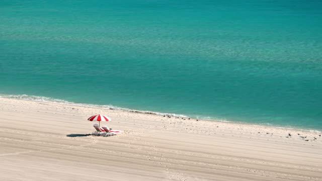 empty miami beach - seagull stock videos & royalty-free footage