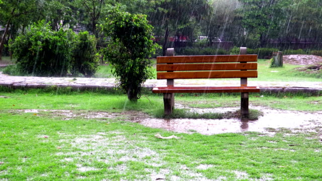empty park bench during torrential rain - monsoon stock videos & royalty-free footage