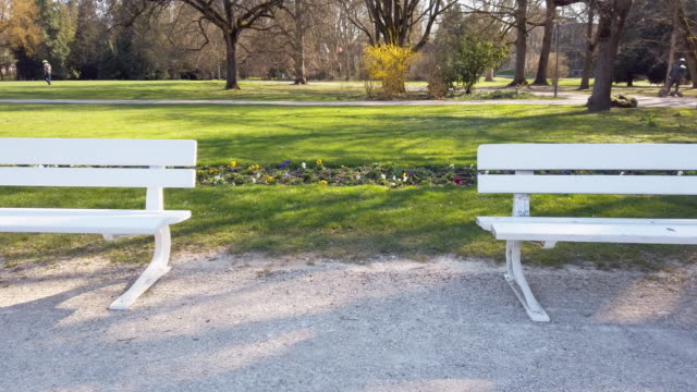 empty park benches in public park during coronavirus pandemic - flowerbed stock videos & royalty-free footage