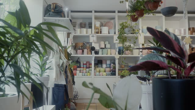empty plant and gift shop - indoors stock videos & royalty-free footage