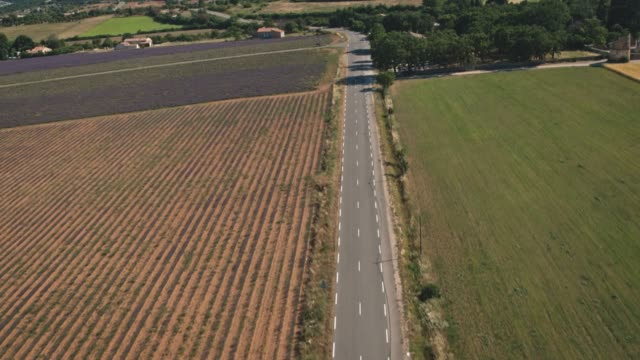 vidéos et rushes de route vide passant par le champ le jour ensoleillé - route déserte