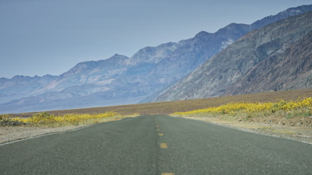 empty road through death valley super bloom - empty road stock videos and b-roll footage