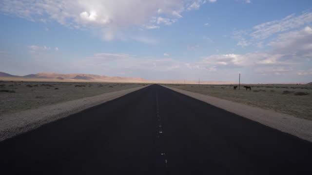 empty road while horses grazing on roadside in desert against sky, idyllic shot of arid landscape - namib desert, namibia - växtätare bildbanksvideor och videomaterial från bakom kulisserna