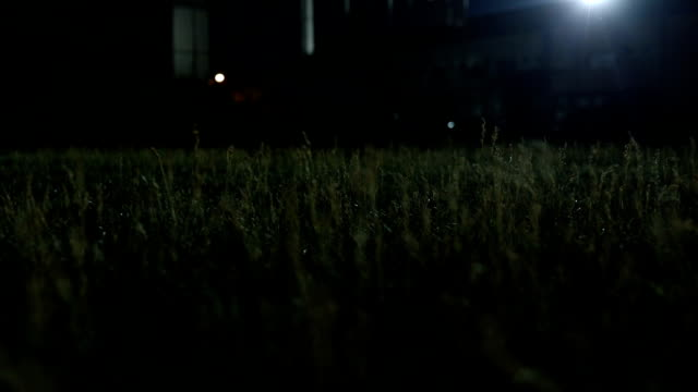 empty soccer field with floodlights at night - sparse stock videos and b-roll footage