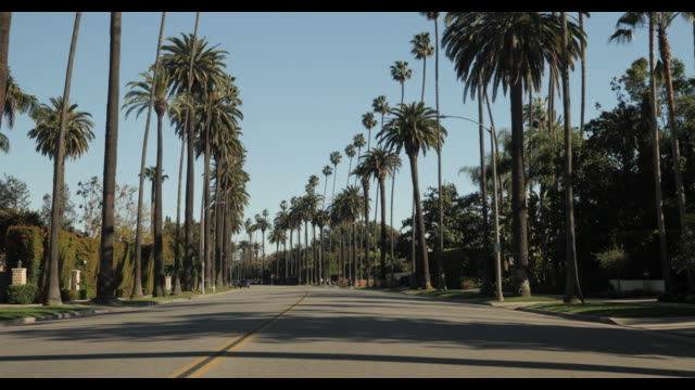 stockvideo's en b-roll-footage met empty street no cars tracking shot in beverly hills ca - beverly hills californië