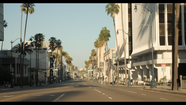 empty street wilshire blvd in los angeles / beverly hills - no traffic - loss stock videos & royalty-free footage