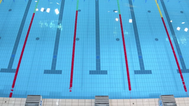 stockvideo's en b-roll-footage met aerial empty swimming pool for competitions - leeg toestand