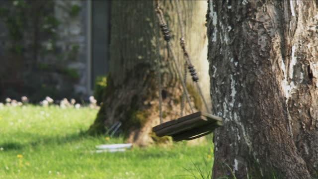 MS Empty tree swing swaying in wind, Marchin, Belgium