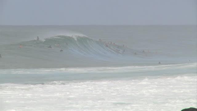 vídeos de stock, filmes e b-roll de empty wave at pipeline 2 - pipeline wave