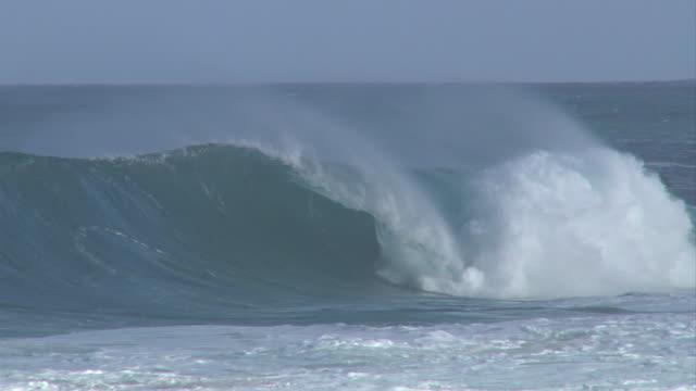 vídeos de stock, filmes e b-roll de empty wave at pipeline 4 - pipeline wave