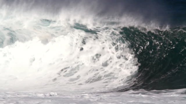 MS Empty wave with offshore winds breaking on  inside reef  / Haleiwa, Hawaii, United States