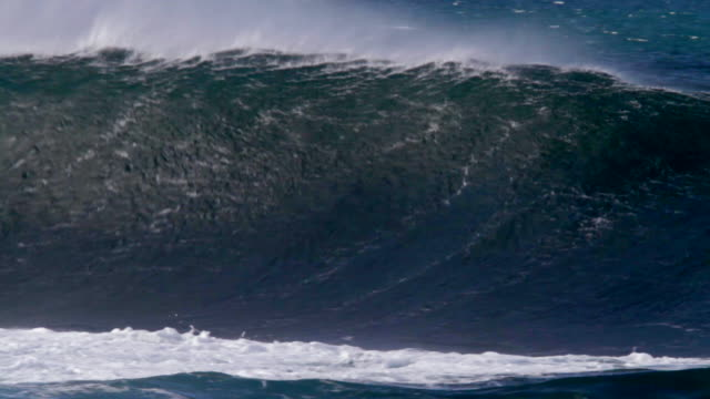 stockvideo's en b-roll-footage met ms empty wave with offshore winds breaking on  inside reef  / haleiwa, hawaii, united states - groot