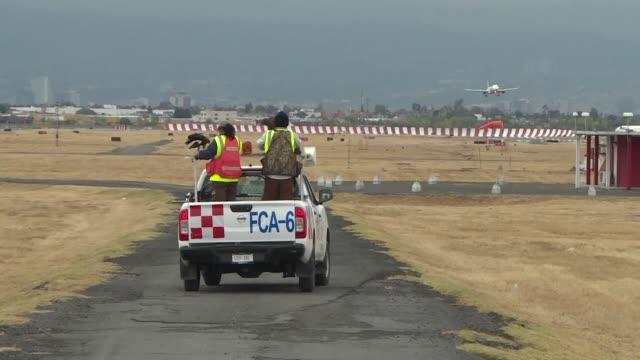 En el aeropuerto de Ciudad de Mexico dos halcones peregrino cumplen una tarea fundamental alejar a las aves que pueden colisionar con un avion o...