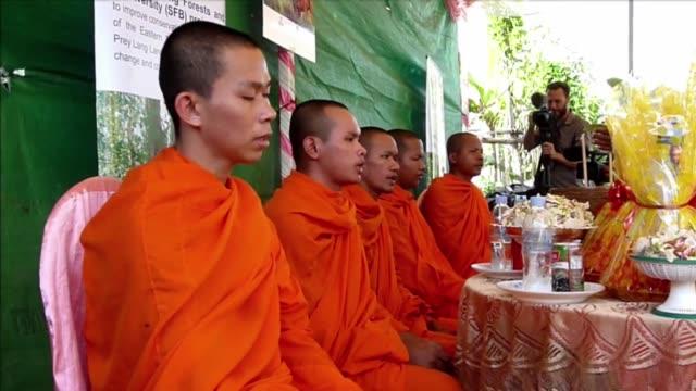 en medio de las bendiciones de una multitud y de rezos de monjes budistas el ultimo elefante trabajador de la capital camboyana se prepara para... - multitud stock videos & royalty-free footage