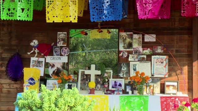 En Mexico las mascotas tambien son homenajeadas en el Dia de los Muertos una tradicion ancestral que desde hace anos se extiende a los cementerios de...