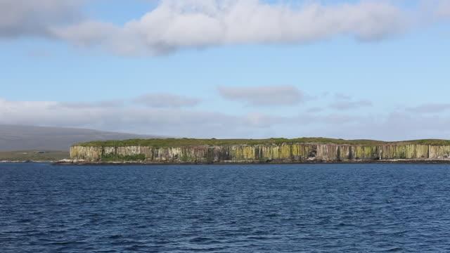 enderby island coastline, auckland islands - island stock videos & royalty-free footage