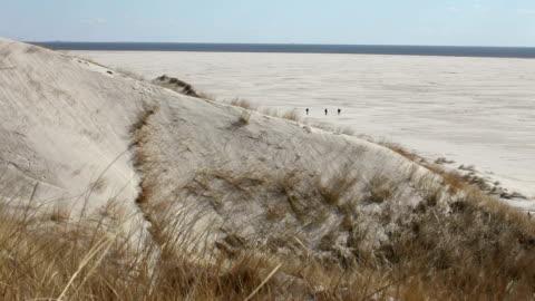 endlosen beach - nordsee stock-videos und b-roll-filmmaterial