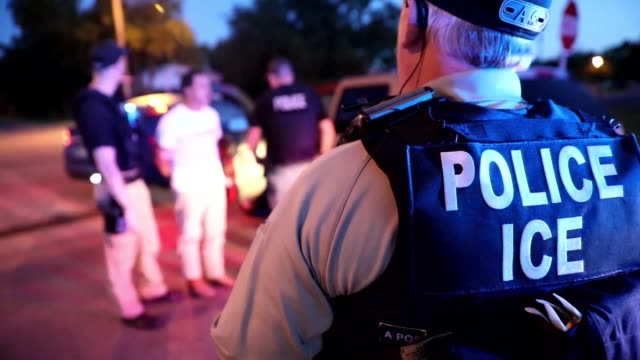 ice enforcement and removal operations arrest criminal fugitives as part of operation cross check - emigration and immigration stock videos & royalty-free footage