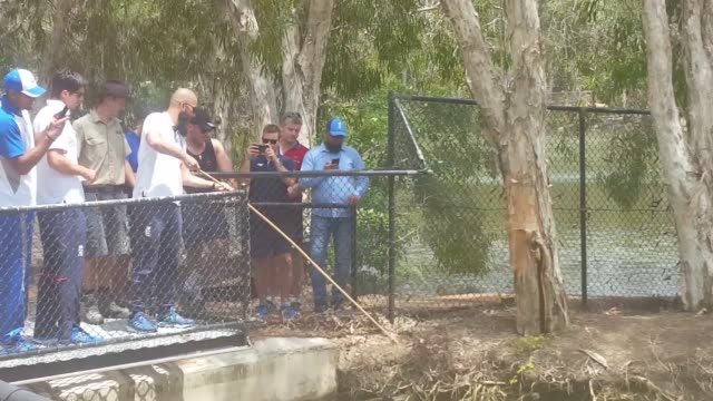 England cricketers Moeen Ali and Alastair Cook meet Bully the crocodile at Townsville's Billabong sanctuary The team is in Australia ahead of their...