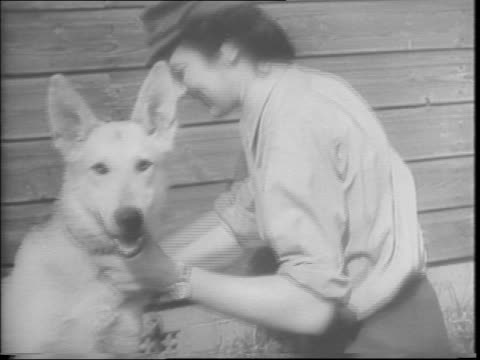 england / dogs trained for battle at combat school / women handlers take care of dogs / battlefield k9 training school / dogs of war in drill... - 1943年点の映像素材/bロール