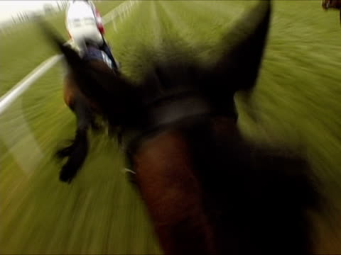 pov, england, newbury, jockey riding horse in horseracing  - racehorse stock videos and b-roll footage
