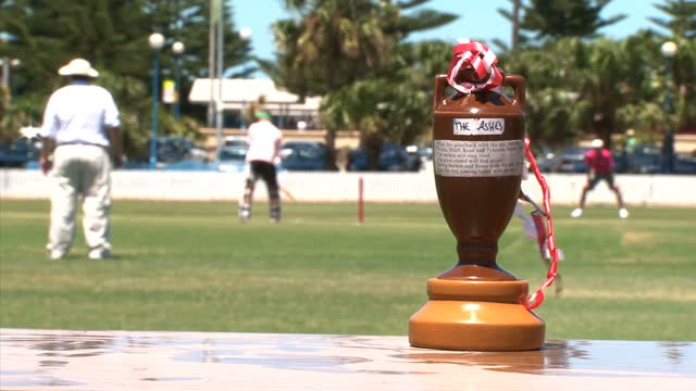 england's barmy army cricket supporters look forward to the fifth final test in sydney ian woods reports barmy army win the fans ashes on january 02... - テストクリケット点の映像素材/bロール