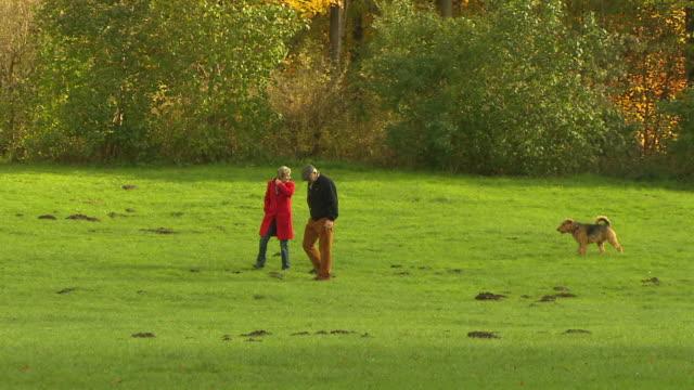 englischer garten, autumn,  lawn, trees, an old couple with dog - ミュンヘン エングリッシャーガルテン点の映像素材/bロール