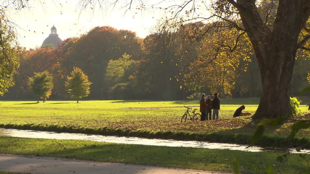 englischer garten, autumn,  people with dogs, lawn, coloured trees, little river, water - ミュンヘン エングリッシャーガルテン点の映像素材/bロール