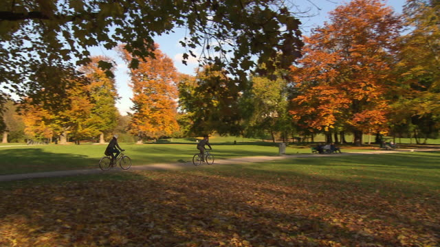 englischer garten, autumn,  sunny,  coloured trees, park, people riding bike, panning shot - ミュンヘン エングリッシャーガルテン点の映像素材/bロール
