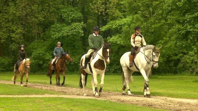 englischer garten, people ride horses, lawn, trees - 馬勒点の映像素材/bロール