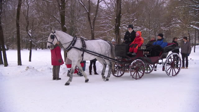 englischer garten, winter, snow, people in carriage, walking people - arbeitstier stock-videos und b-roll-filmmaterial