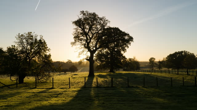 english countrside at morning timelapse - england stock videos & royalty-free footage