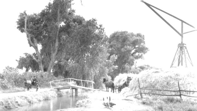 dx - english countryside - stream l f.g. to b.g. - bridge near b.g. - trees - hay wagon - geese - mill or ? l b.g. - b&w.  (restricted) - horse family stock videos & royalty-free footage
