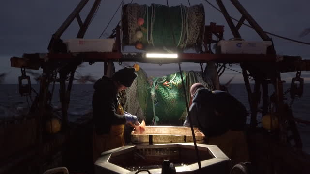 """english fishermen working at night on fishing boat. british fishermen aboard their boat """"about time"""" in the english chanel, fishing for a variety of... - fishing industry stock videos & royalty-free footage"""