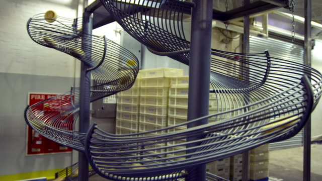english muffins spiraling down blue metal slides in a bread factory - rutschen stock-videos und b-roll-filmmaterial