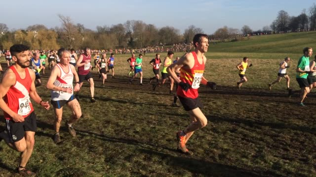 english national cross country championship at hampstead heath parliament hill organised by ecca english cross country association - cross country running stock videos and b-roll footage