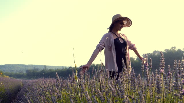 enjoying nature. woman in blooming lavender - natural condition stock videos & royalty-free footage