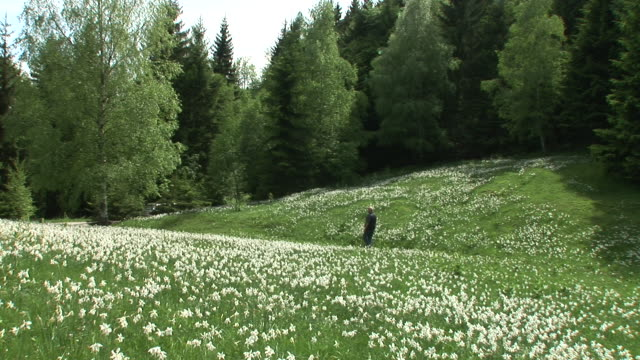 HD: Enjoying The Spring