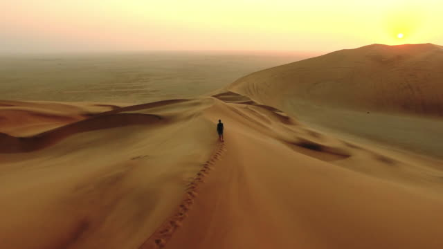 enjoying the tranquility of a desert dawn - desert stock videos & royalty-free footage