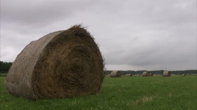 ensilage on a field sweden. - オーレスン地域点の映像素材/bロール