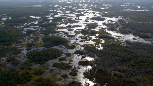entering the okefenokee national wildlife refuge  - aerial view - georgia,  charlton county,  united states - okefenokee national wildlife refuge stock videos and b-roll footage