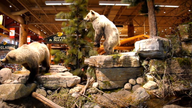 425ec6d0 Entrance to the Bass Pro Shop in Vaughan Mills Mall The shop is a privately  held