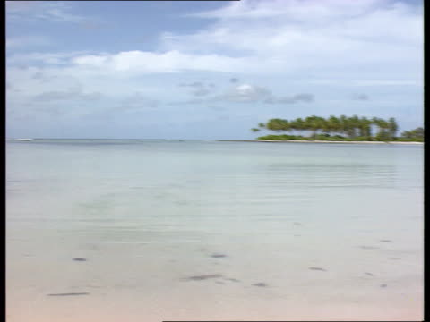 earth summit special report; cf tape no longer available kiribati gv blue sky white sandy beach and shimmering blue sea l-r woman walks along sandy... - pacific ocean stock videos & royalty-free footage