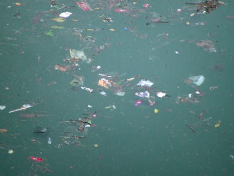 Environment: Swirling Trash Floating in Water