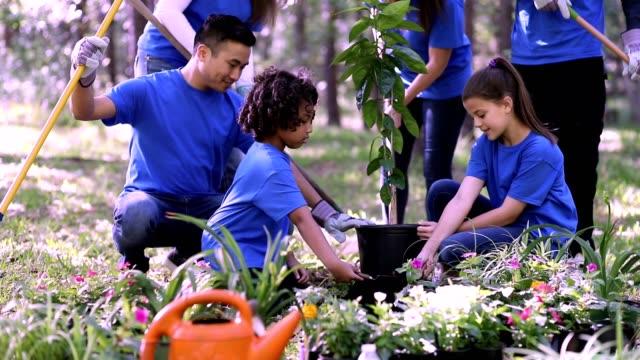 Environmental beautification. Volunteers plant flowers, tree, plants at park in spring.